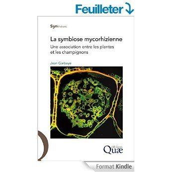 Que sont les mycorhizes sont elles utiles dans nos - Association plantes aromatiques entre elles ...