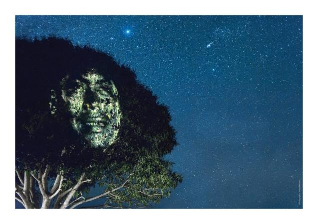 Portrait d'un agriculteur maya en synergie avec la Nature