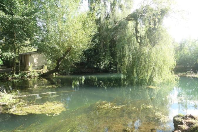 À deux pas de la Cathédrale de Bourges, des canaux riches en biodiversité