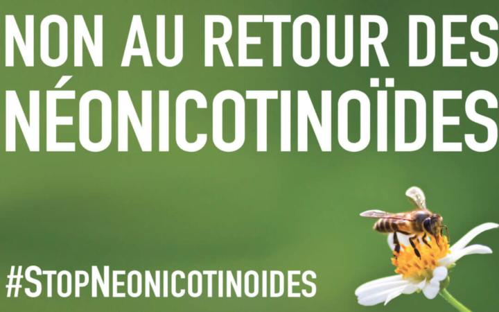 Affiche d'opposition au retour des néonicotinoïdes