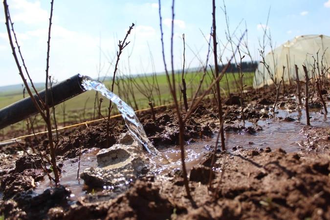 Au Rojava, l'eau est une ressource rare et souvent polluée
