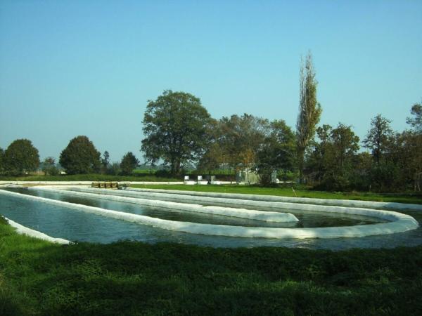 Bassin à ciel ouvert de culture d'algues