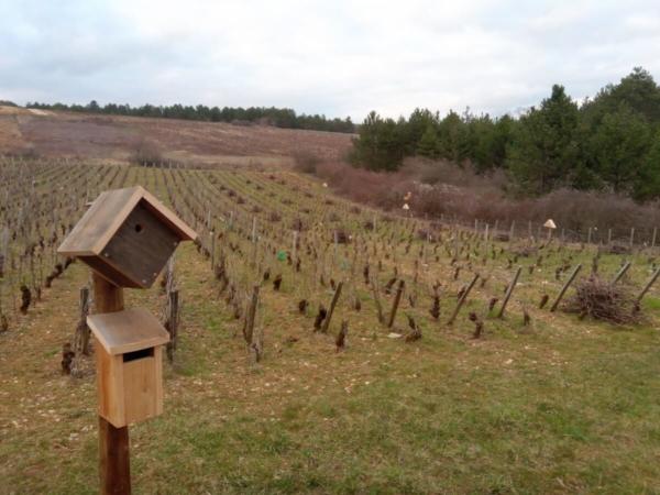 Bourgogne - Accompagnement de tenue d'exploitation raisonnée et installation de nichoirs et abris en fonction des espèces présentes