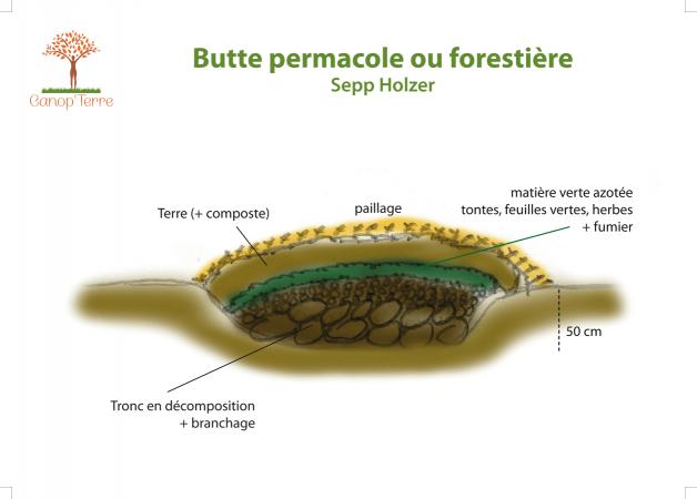 Schéma butte forestière Sepp Holzer