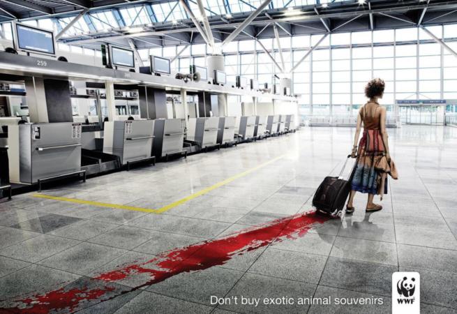 Campagne de sensibilisation du WWF sur le sujet