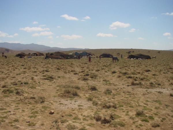 Campement nomade du côté d'Adraskan, 2006
