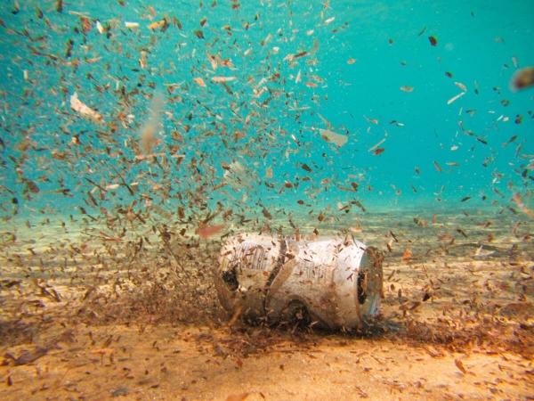 Canette en aluminium au fond de l'eau