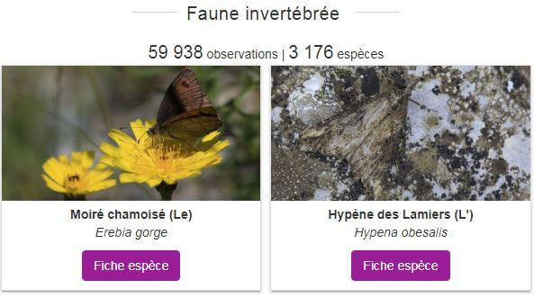 Capture d'écran de BiodivEcrins