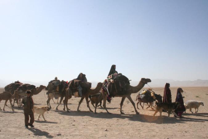Caravane nomade pashtoune, mars 2006, province d'Hérat
