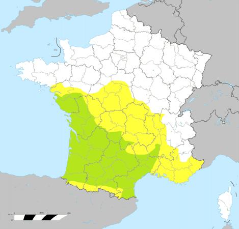 Carte de répartition de la genette commune (données 2010 ONCFS). Vert : Zone de présence régulière Jaune : Zone de présence irrégulière Blanc : Zone avec observations diffuses