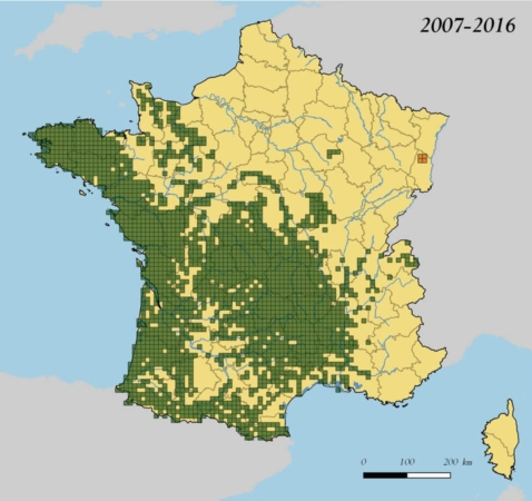 Carte de répartition de la Loutre d'Europe en France, sur la période 2007-2016