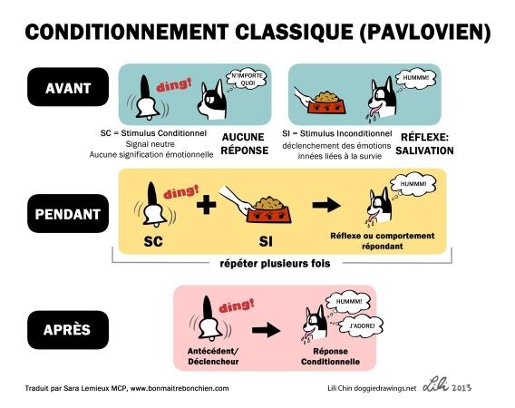 Conditionnement pavlovien - Schéma explicatif du conditionnement classique