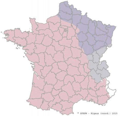 Contours de la répartition des campagnols aquatiques en France