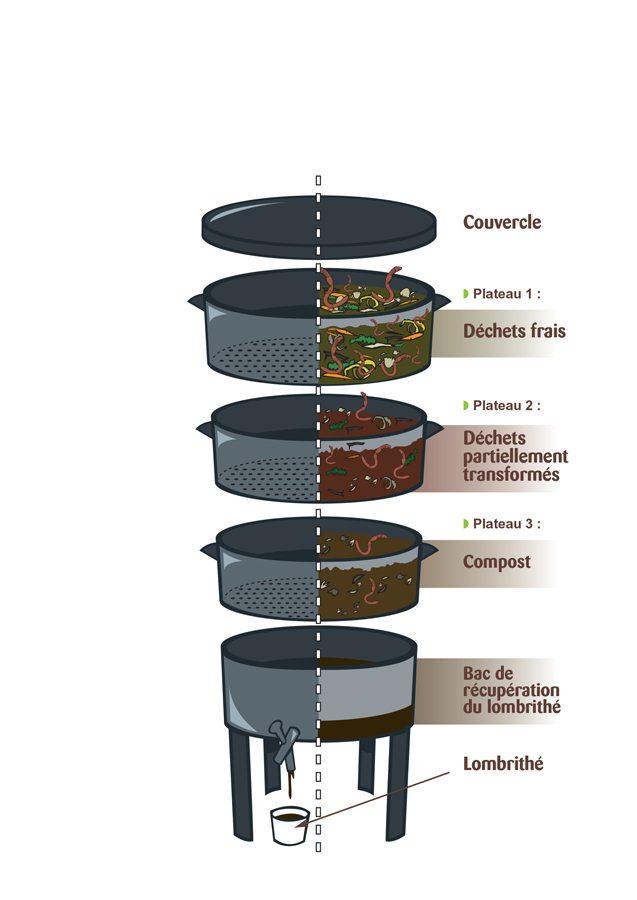 Coupe latéral d'un lombricomposteur en fonctionnement normal de lombricompost