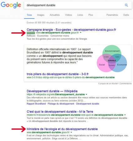 Résultats Google pour la recherche Développement durable