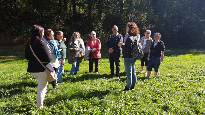 De nombreux stages et ateliers de découverte des plantes sauvages comestibles sont proposés par des professionnels