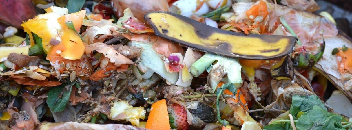 Déchets organiques compostables