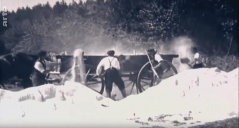 Des ouvrires agricoles utilisent du phosphore au XIXe siècle