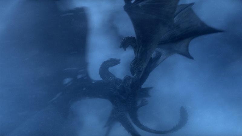 Deux dragons mâles luttant pour le même territoire : une lutte à mort qui met la survie de l'espèce en danger
