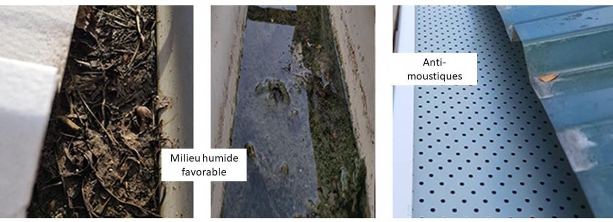 Dipositif pour limiter la présence de moustiques dans les gouttières