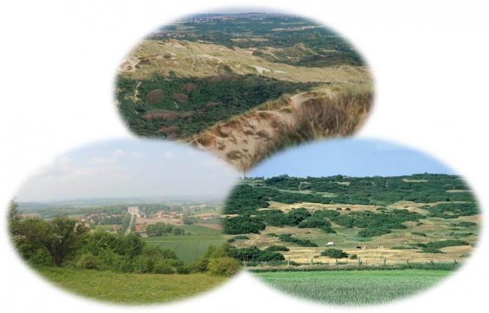 Diversité des paysages sur le territoire du Parc Naturel Régional des Caps et Marais d'Opale.