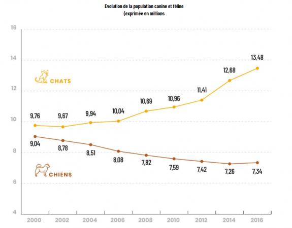 Évolution des populations canines et félines en France depuis l'an 2000