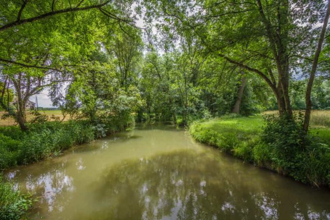 Exemples d'habitats fréquentés par le Vison d'Europe (cours d'eau agricoles)
