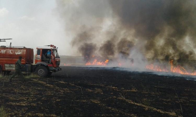Des pompiers tentent d'éteindre les feux que des cellules dormantes de l'État islamique démarrent dans les champs de blé.