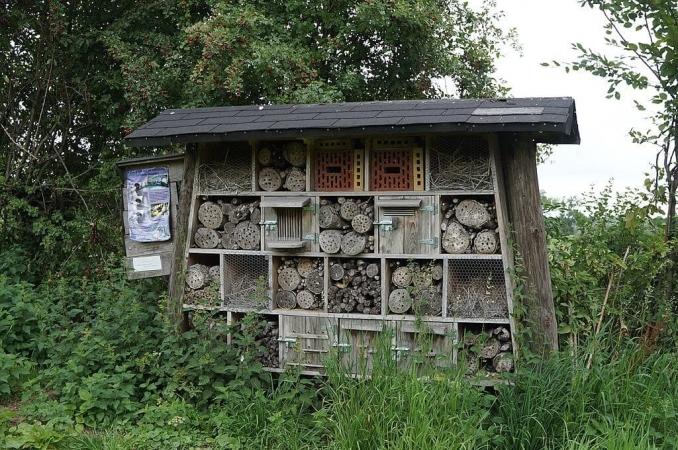 Installer un hôtel à insectes dans votre potager, c'est de l'écologie. L'installer sur le parking d'un Burger King, c'est du greenwashing.