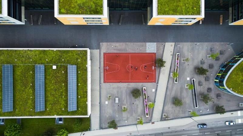 Il existe bien des façons de voir la renaturation du milieu urbain… De beaux débats en perspective !