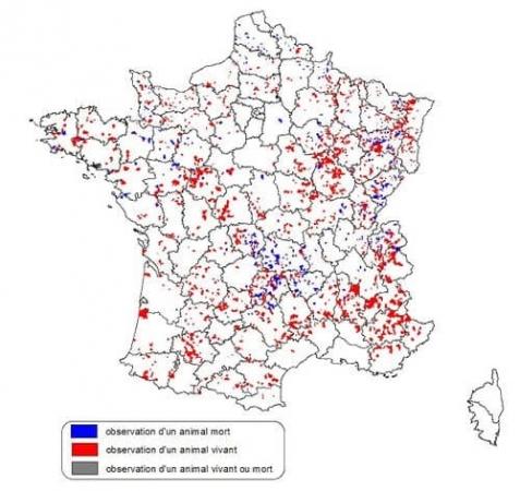 Indices de présences d'hermines collectées de 2001 à 2006