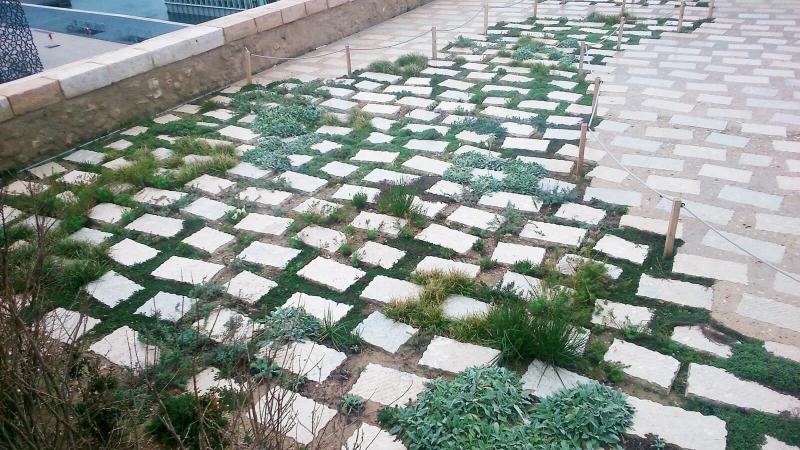 jardin sec mucem de marseille
