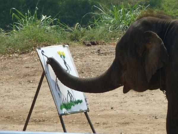 La probablité de voir un éléphant, même asiatique comme ici, peindre est infime…