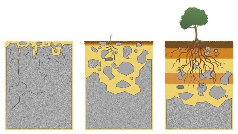 Les 3 étapes de la création d'un sol