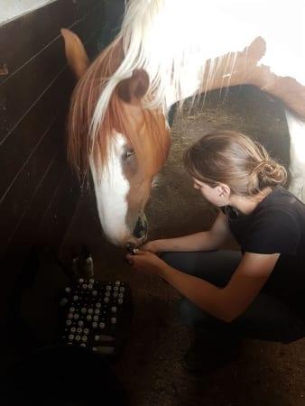 Les animaux doivent avoir le choix de choisir des remèdes et être autorisés à repartir quand ils ne sont pas nécessaires