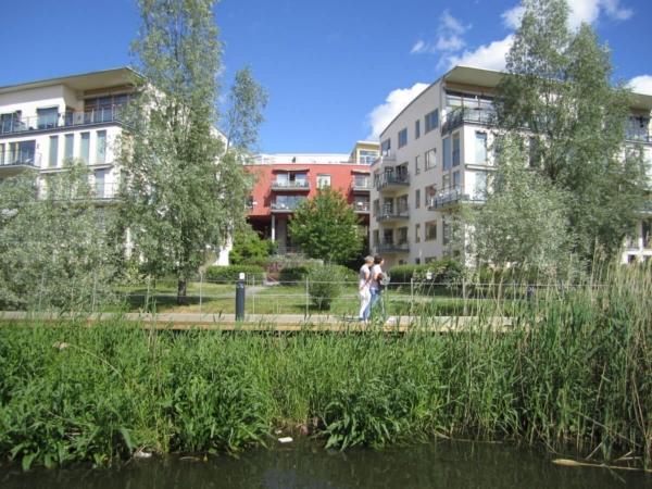 Les nouveaux aménagements urbains doivent laisser une place plus importante à la biodiversité