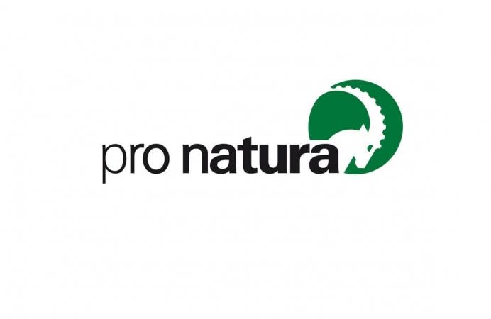 Logo de l'ONG Suisse Pro Natura