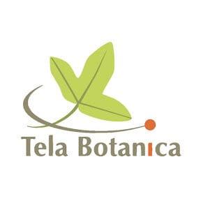 Chaîne YouTube du réseau Tela Botanica