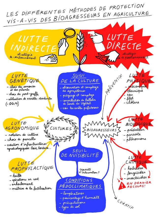 Méthodes de protection contre les bioagresseurs en agriculture