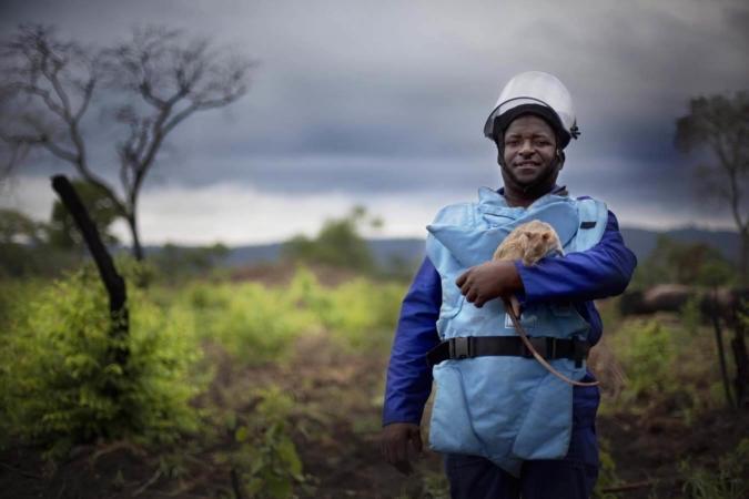 Mozambique, Angola… Apopo est très présent en Afrique