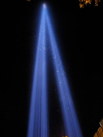 Oiseaux migrateurs bloqués dans le faisceau lumineux du mémorial des deux tours du World Trade center