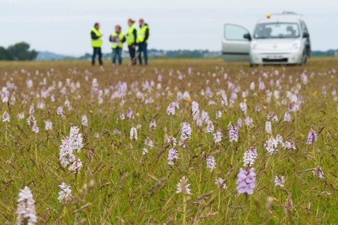 Personnel d'aéroport en train de suivre la faune et la flore sur leur terrain