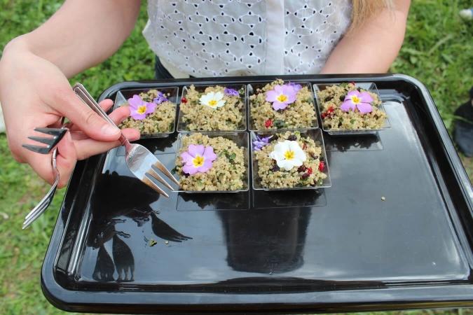 Plats imaginez pour valoriser la flore des friches