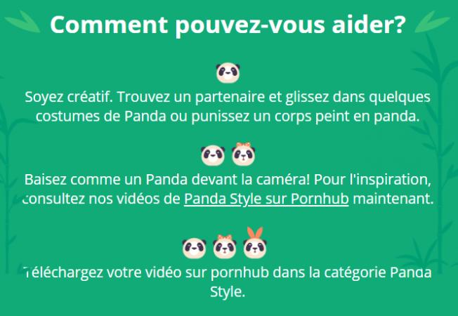 Quelques conseils, si vous souhaitez vous lancer dans le Porno Panda