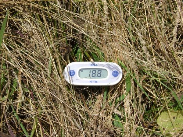 Prise de température avec Rolofaca
