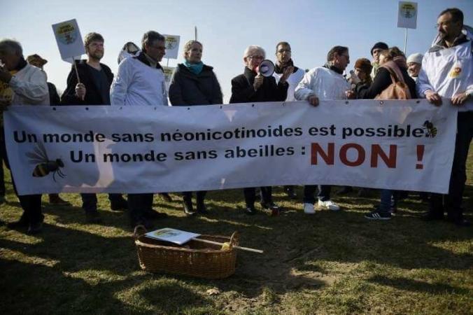 Rassemblement écologiste à Paris, le 15 mars 2016.