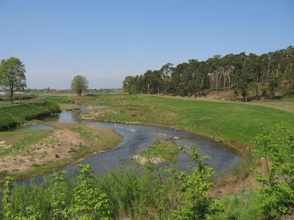 Reméandrage de rivière