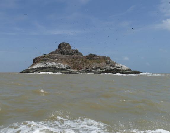 Réserve de l'Île du Grand-Connetable en Guyane
