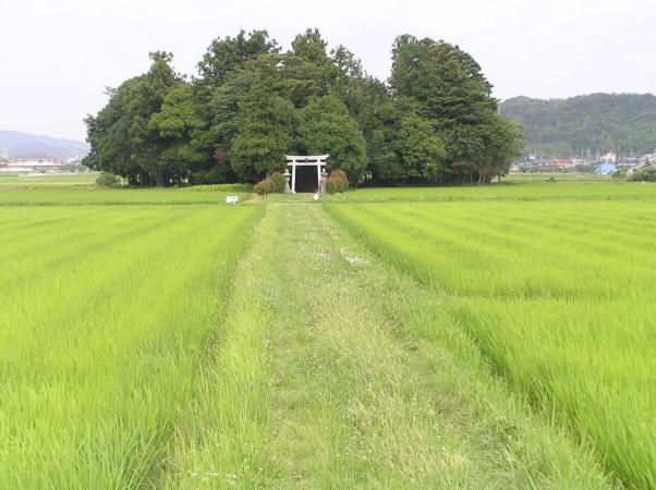 Sanctuaire Shinto de Kasuga, à Kwakita, ville de Sasayama, préfecture Hyogo