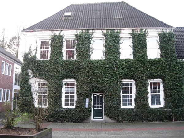 Sans lierre recouvrant sa façade, cette maison n'aurait certainement pas été prise en photo…